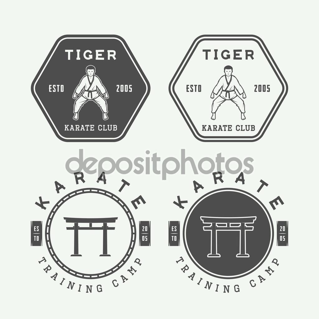 Set of vintage karate or martial arts logo, emblem, badge, label and design elements. Vector illustration